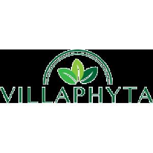 БАД к пище VILLAPHYTA