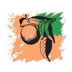 Персиковых семян масло рафинированное 50 мл
