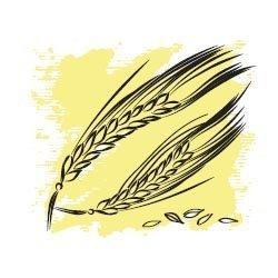 Пшеничных зародышей масло нерафинированное 50 мл