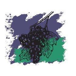 Виноградных косточек масло рафинированное 50 мл